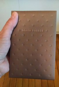 The brain freeze journal in hand